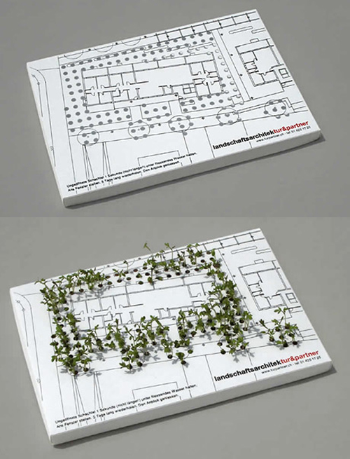 plant business card