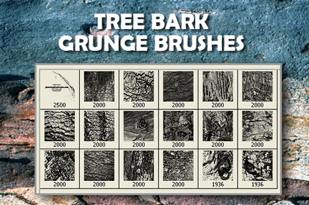 18_Tree_Bark_PS_Brushes_by_fiftyfivepixels
