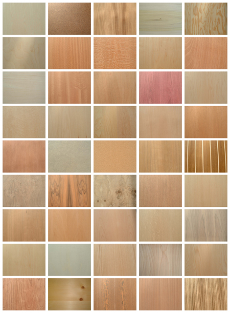 45_Wood_Textures_by_Jammurch