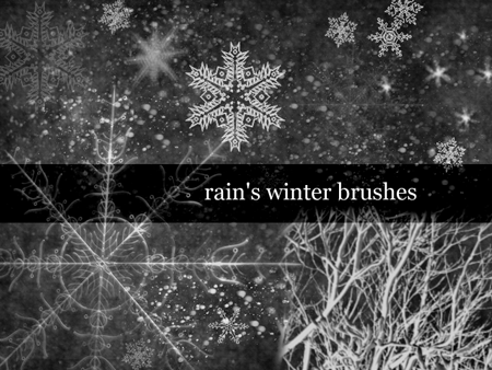 Winter Brushes