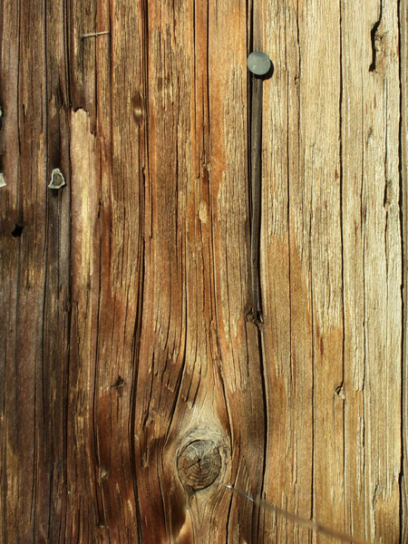 Wood_Texture_Stock_by_digital_amphetamine