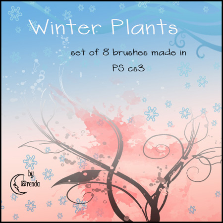 winter plants brushes