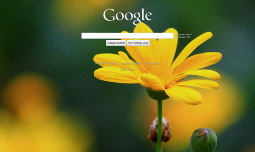 50 images for personalizing your google homepage bluefaqs
