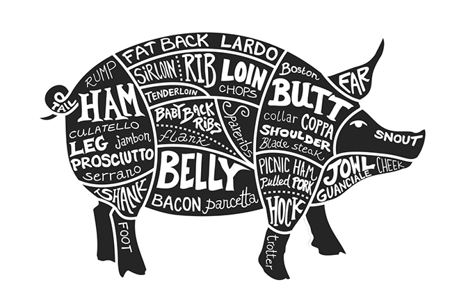 Labeled cuts of meat of a pig